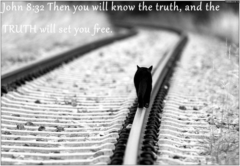 John 8:32 Then you will know the truth, and the TRUTH will set you free.