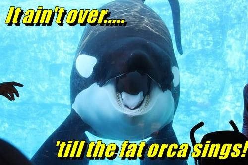It ain't over..... 'till the fat orca sings!