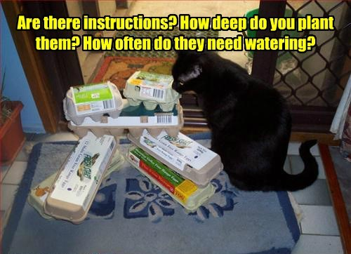 cat instructions chickens caption harvest plant watering - 8571835392
