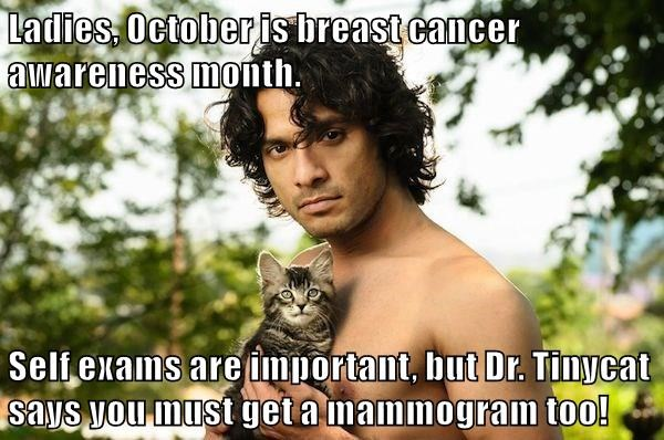 Ladies, October is breast cancer awareness month.  Self exams are important, but Dr. Tinycat says you must get a mammogram too!