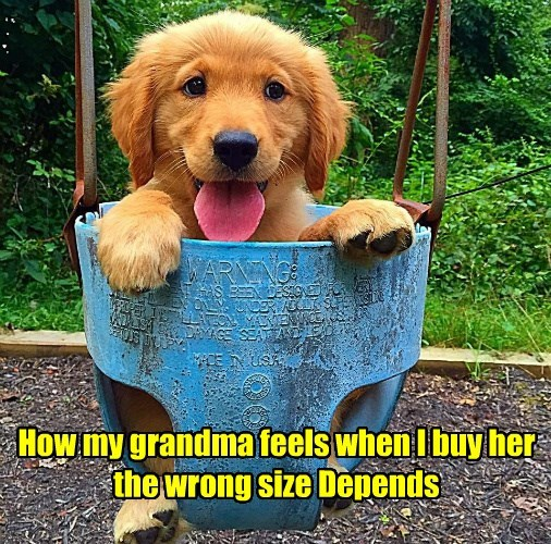 depends feels buy puppy grandma wrong sized caption