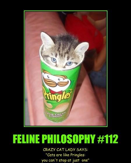 FELINE PHILOSOPHY #112