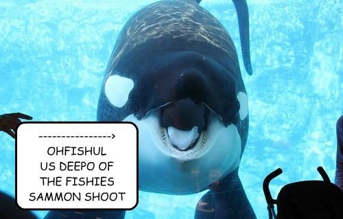 ----------------> OHFISHUL US DEEPO OF THE FISHIES SAMMON SHOOT