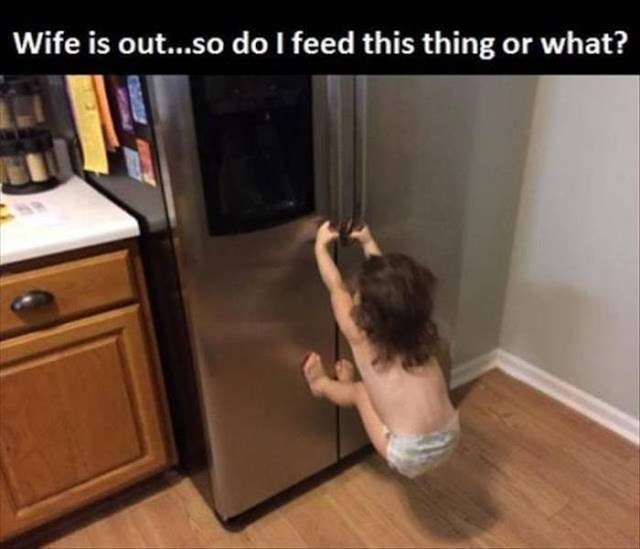 funny-parent-quotes-dont-feed-the-animals