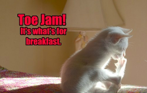 TOE JAM!  It's what's for breakfast.
