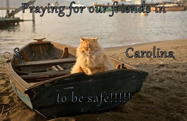 Praying for our friends in  S.                             Carolina to be safe!!!!!