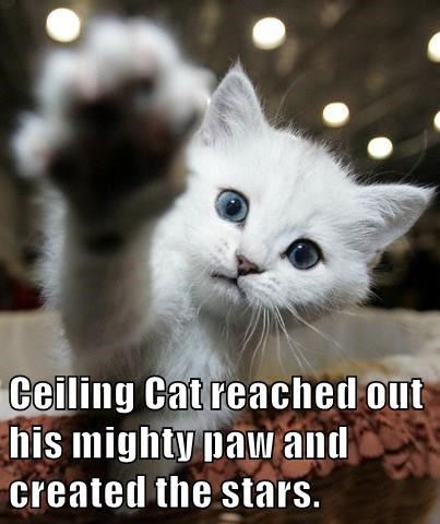 Ceiling Cat reached out his mighty paw and created the stars.