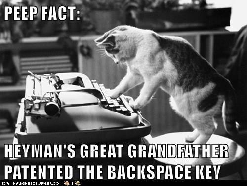 animals Grandpa caption typewriter Cats funny - 8572775168