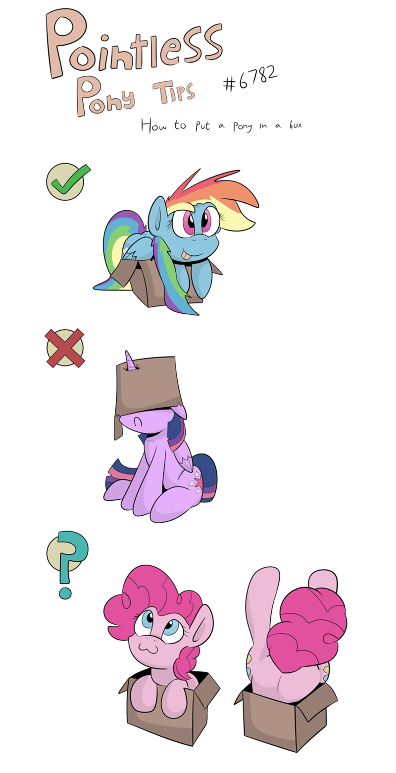 box makes sense MLP advice - 8572790784