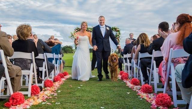 service dog best man cute This Veteran's Service Dog Is His Best Friend and the Obvious Choice to Be Best Man at His Wedding
