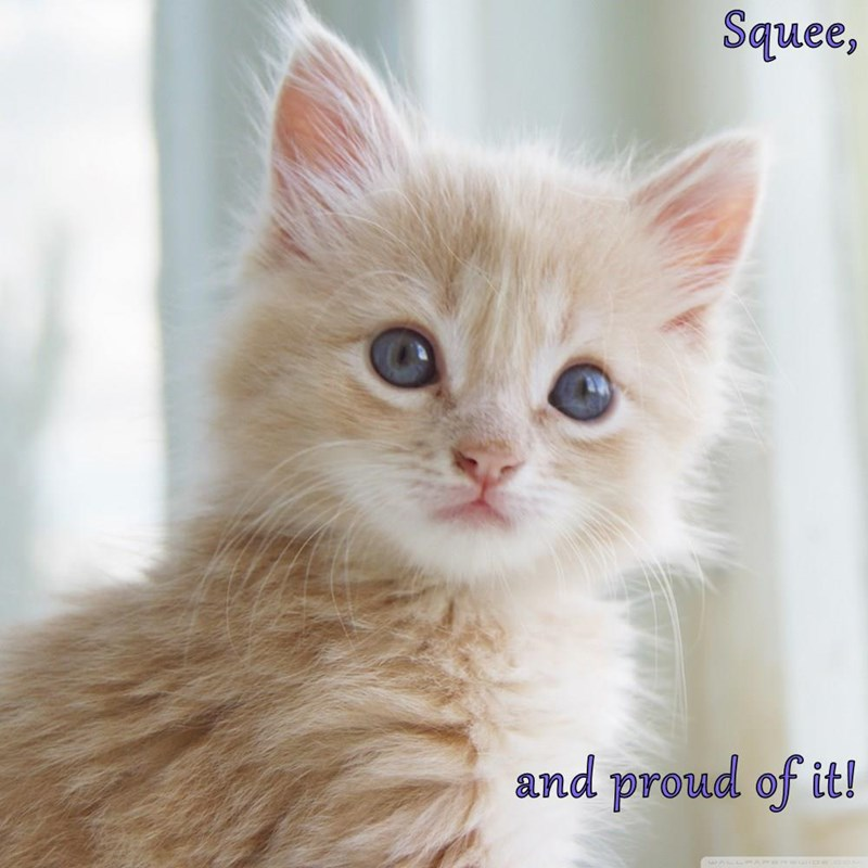 Squee,  and proud of it!
