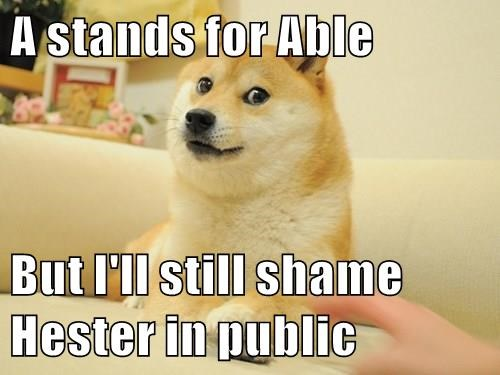 memes animals - 8572888576