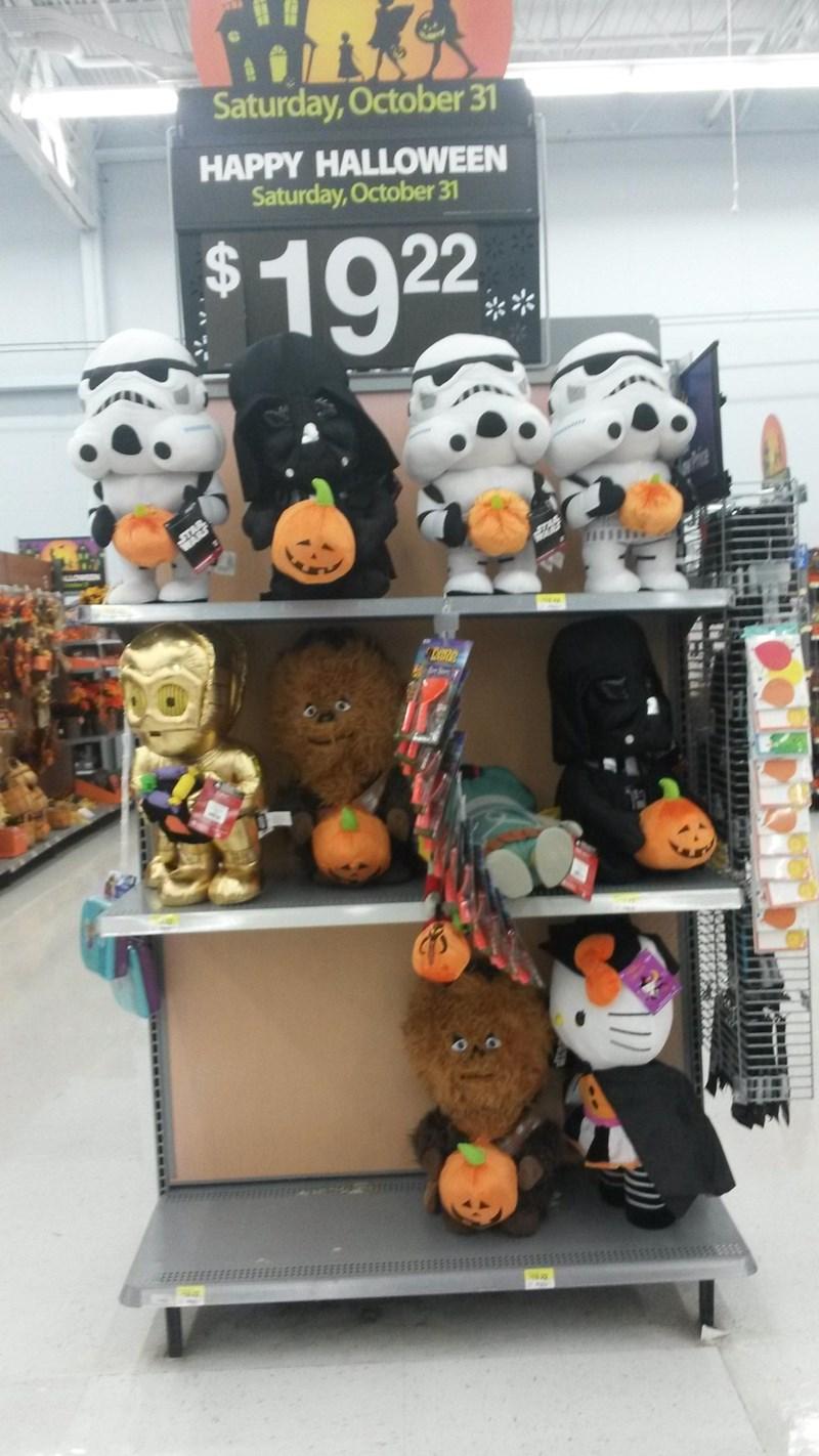 halloween memes d in a pumpkin