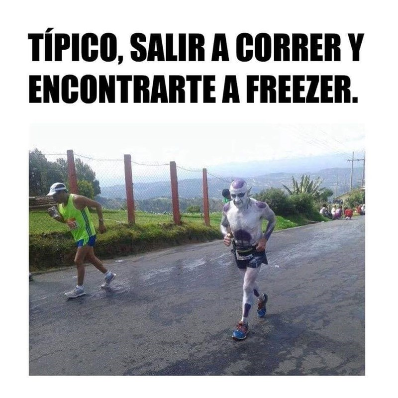 encontrarte a freezer