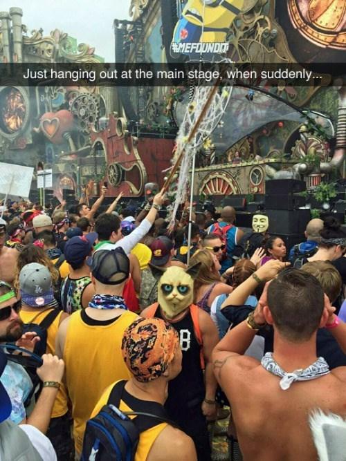 funny memes grumpy cat mask at festival