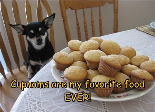 Cupnoms are my favorite food  EVER!