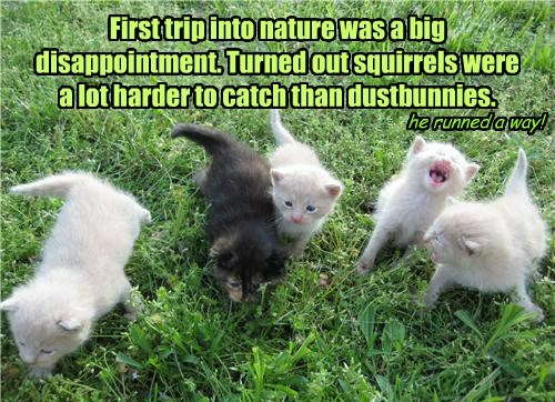 First trip into nature was a big disappointment. Turned out squirrels were a lot harder to catch than dustbunnies.