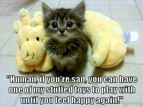 """Human, if you're sad, you can have one of my stuffed toys to play with until you feel happy again!"""