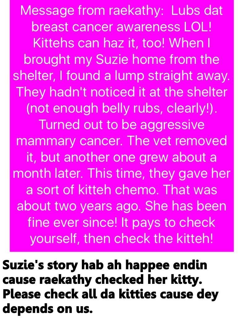 Suzie's story hab ah happee endin cause raekathy checked her kitty. Please check all da kitties cause dey depends on us.