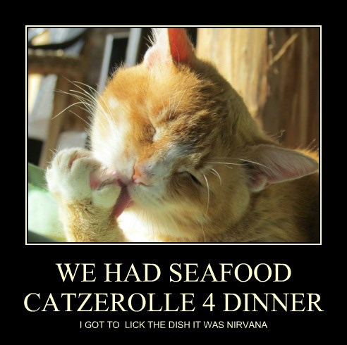 WE HAD SEAFOOD CATZEROLLE 4 DINNER