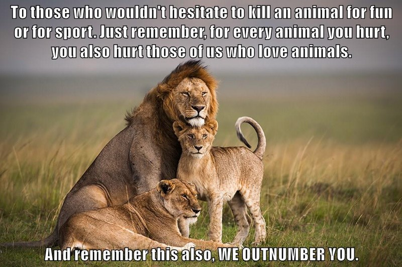 To those who wouldn't hesitate to kill an animal for fun or for sport. Just remember, for every animal you hurt, you also hurt those of us who love animals.  And remember this also, WE OUTNUMBER YOU.