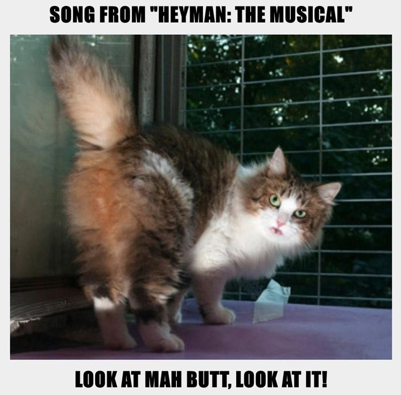 """SONG FROM """"HEYMAN: THE MUSICAL""""  LOOK AT MAH BUTT, LOOK AT IT!"""