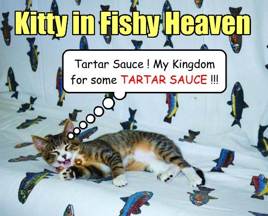 dreams captions cute tartar sauce Cats - 8573523968