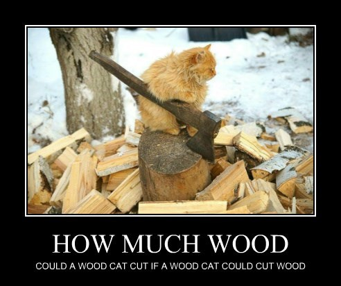 HOW MUCH WOOD