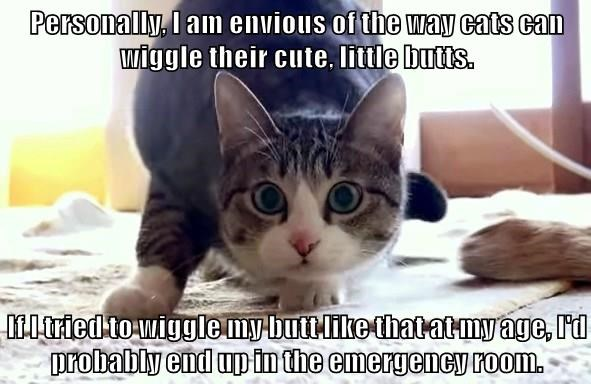 Personally, I am envious of the way cats can wiggle their cute, little butts.  If I tried to wiggle my butt like that at my age, I'd probably end up in the emergency room.
