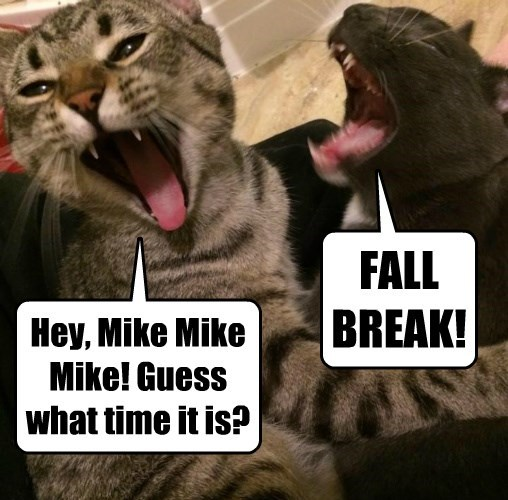 Hey, Mike Mike Mike! Guess what time it is?