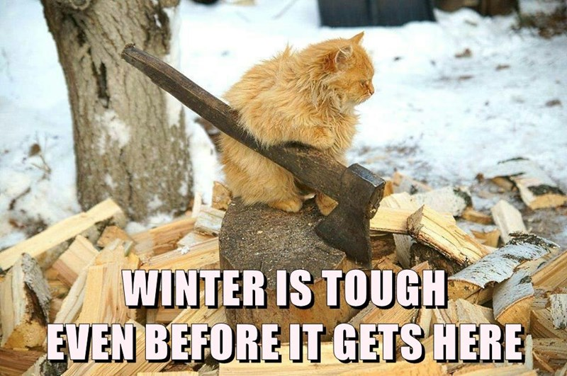WINTER IS TOUGH                                      EVEN BEFORE IT GETS HERE