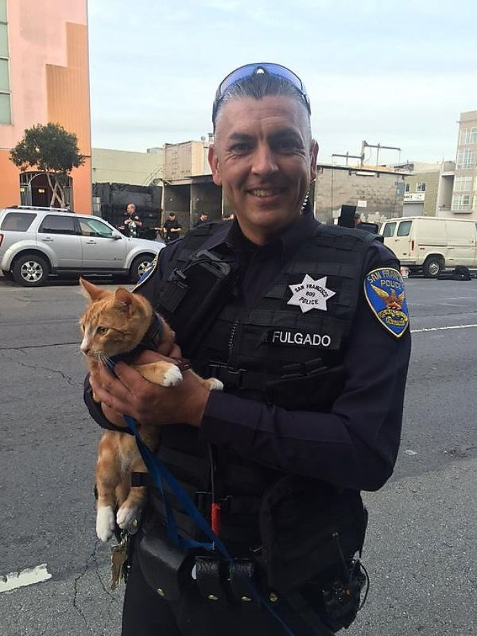 cats news San Francisco Police Enlist the Help of a Man's Cat to Talk Him Off a Ledge