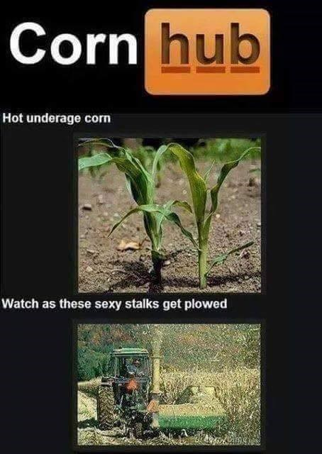 funny memes corn hub