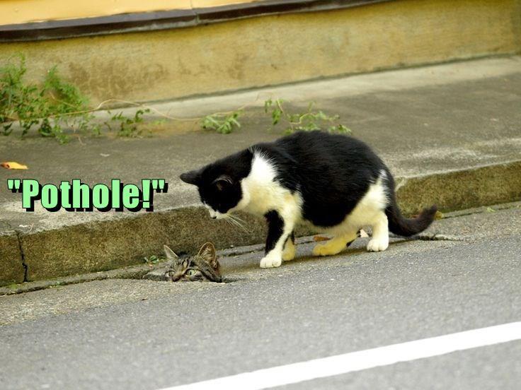 """""""Pothole!"""""""