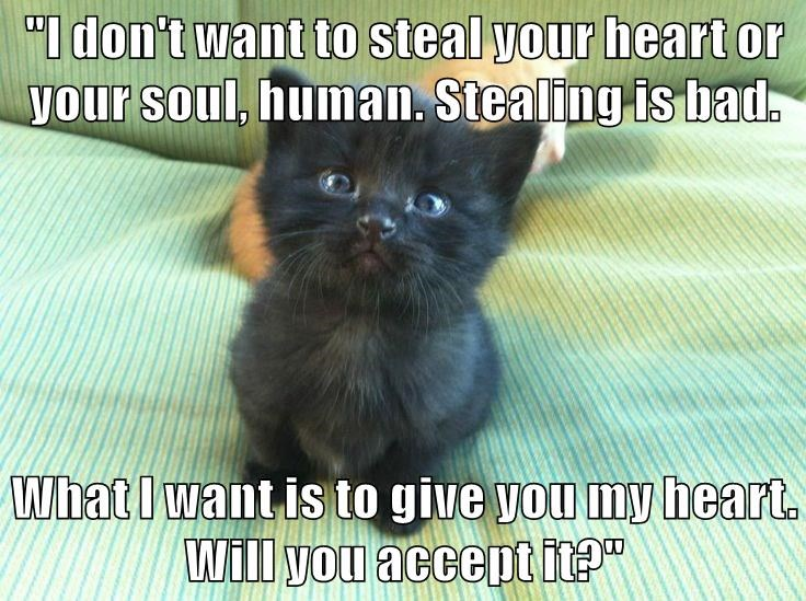 """I don't want to steal your heart or your soul, human. Stealing is bad.  What I want is to give you my heart. Will you accept it?"""