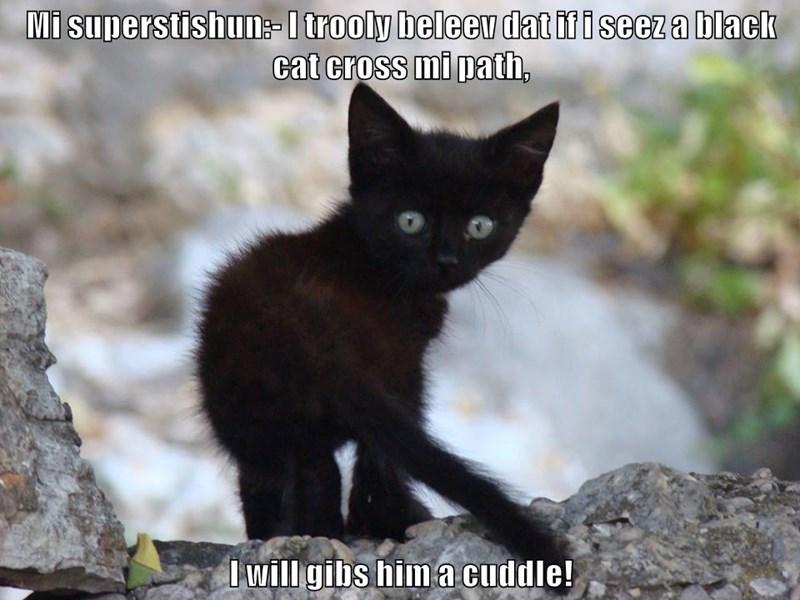 Mi superstishun:- I trooly beleev dat if i seez a black cat cross mi path,  I will gibs him a cuddle!