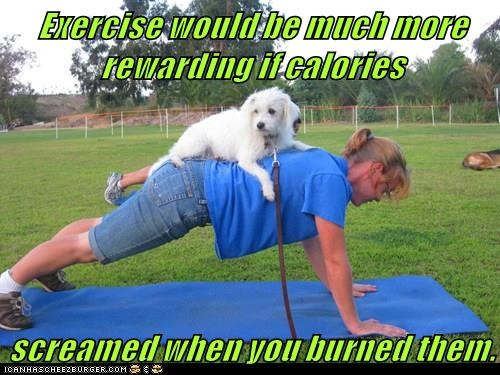 animals dogs rewarding burned calories exercise caption screamed