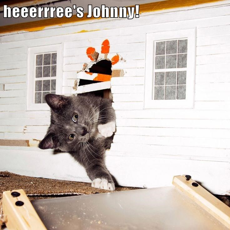 heeerrree's Johnny!