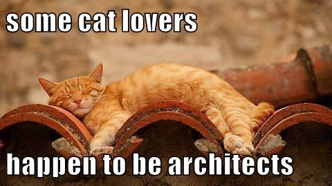some cat lovers  happen to be architects