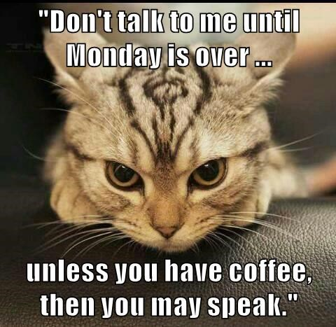 """Don't talk to me until Monday is over ...  unless you have coffee, then you may speak."""