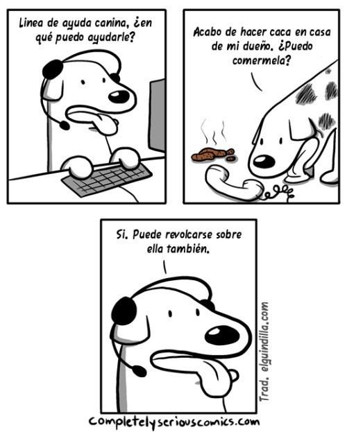 perro loquillo