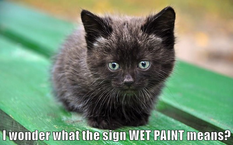 I wonder what the sign WET PAINT means?