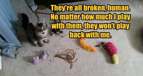 toys broken caption Cats funny - 8574694400
