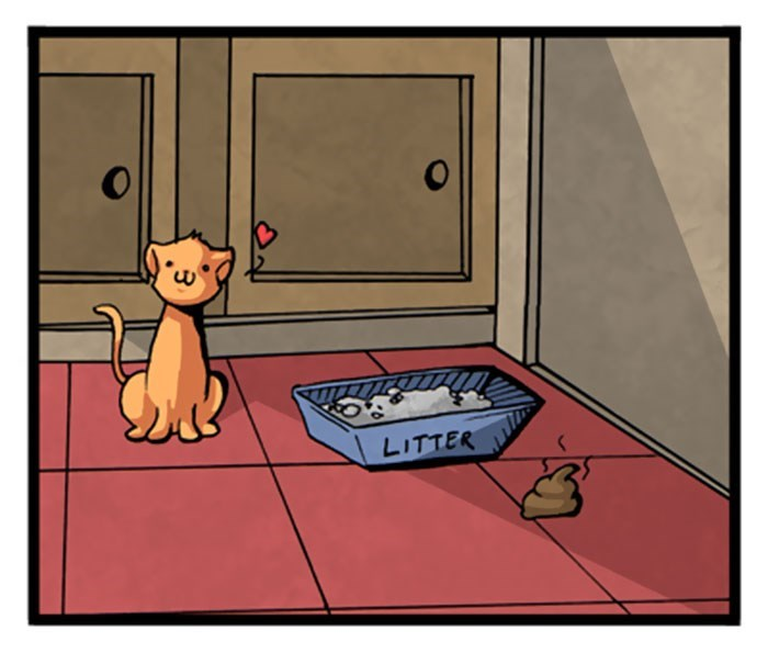 web comics cats Cats Always Know How to Think Outside the Box to Get Your Attention