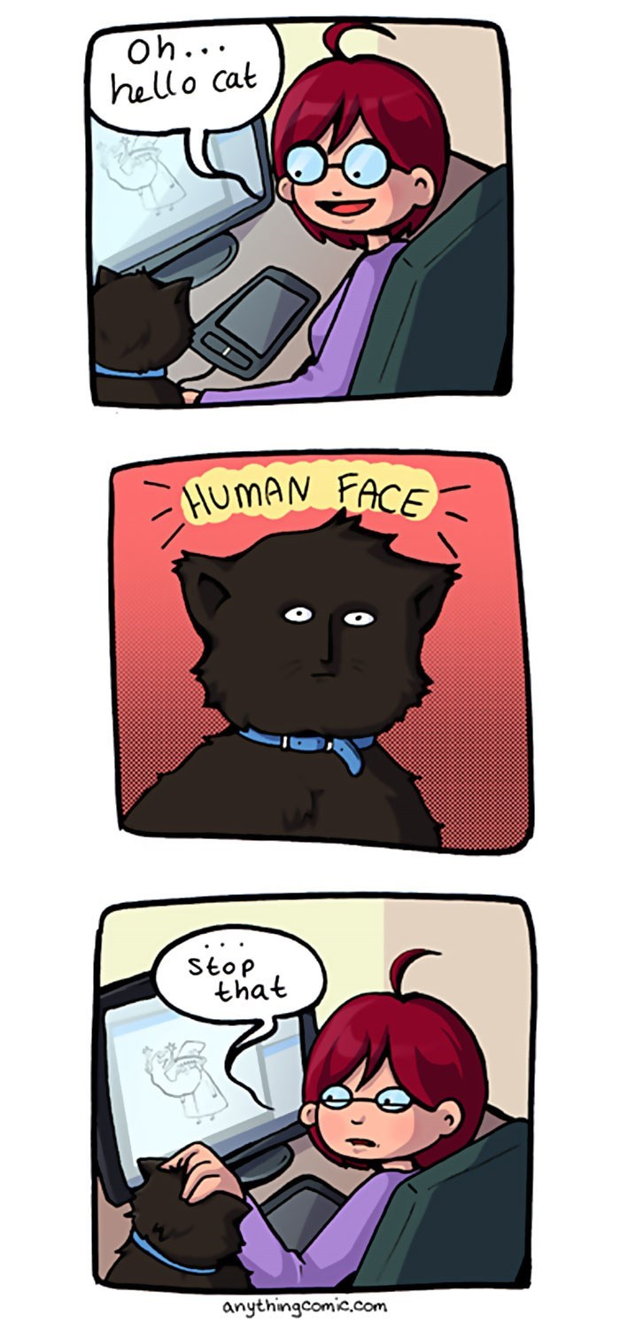 web comics cats Just Look Away When This Happens