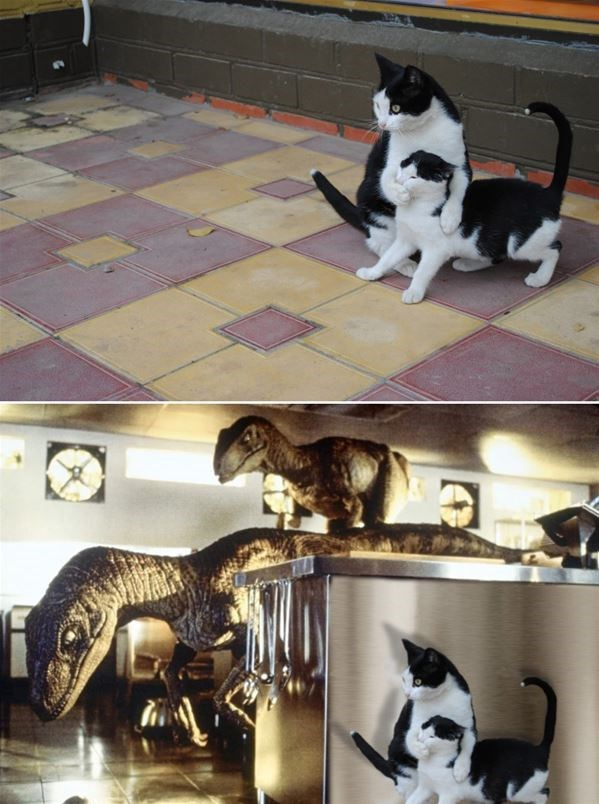 funny memes cats in jurassic park