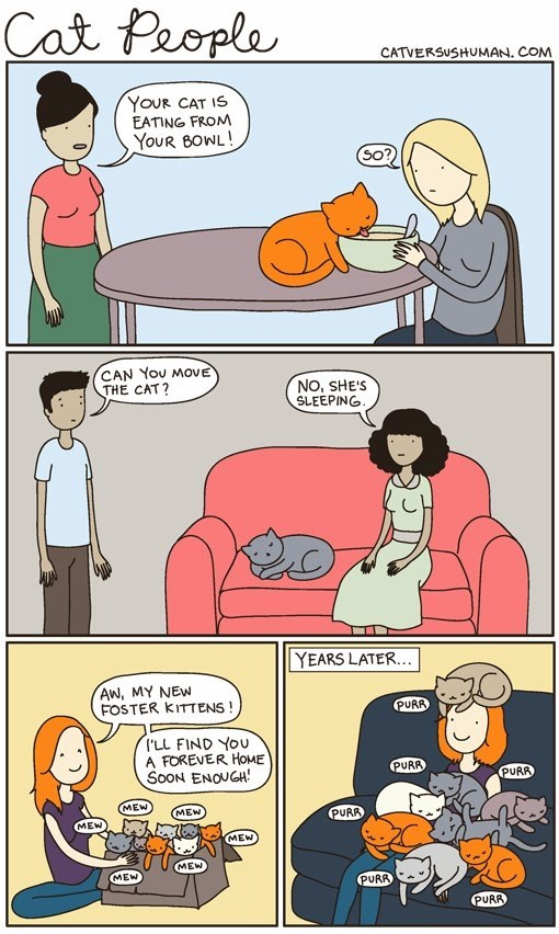 web comics cats This is Normal, Right?