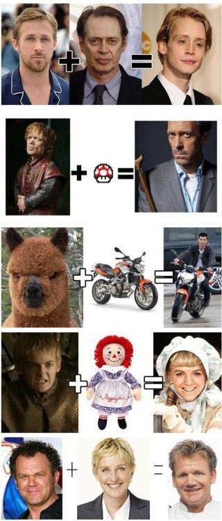 funny memes celeb face mash up