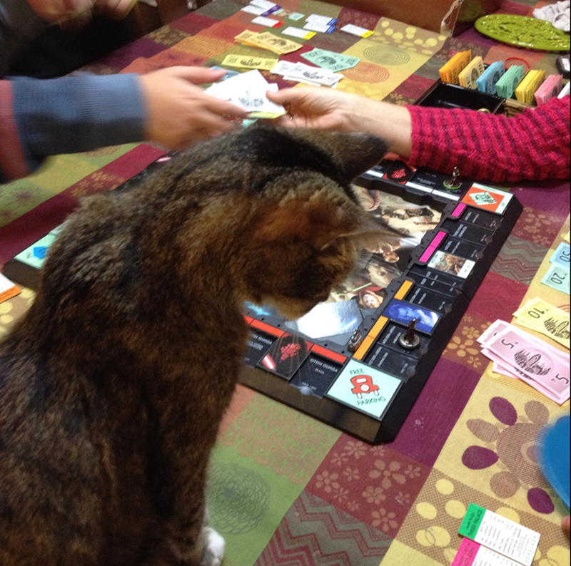monopoly captions Cats funny