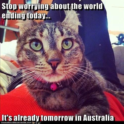 animals cat australia caption ending world stop worrying - 8577131520